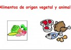 Alimentos de origen vegetal y animal | Recurso educativo 34257