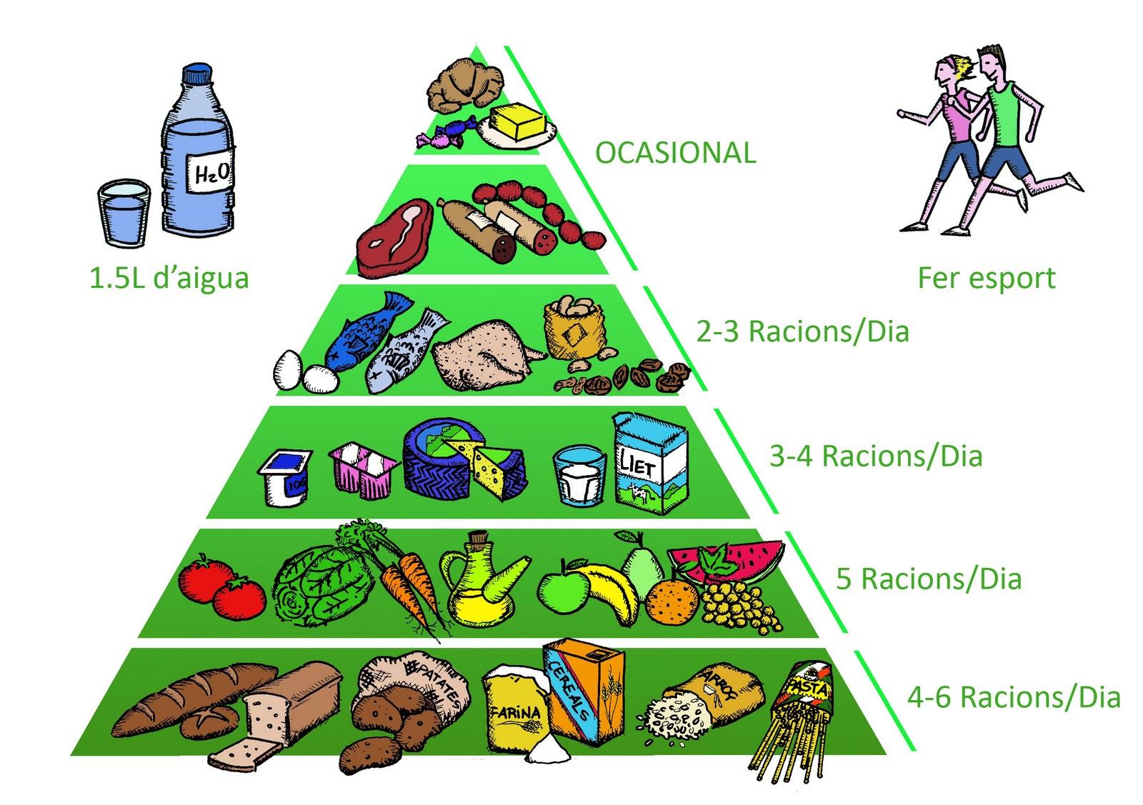 Piramide alimentaria related keywords piramide - Piramide alimentaria para ninos ...