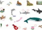 Sea animals | Recurso educativo 14219