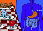 Interactive Human: Digestion interactive game for kids | Recurso educativo 91930